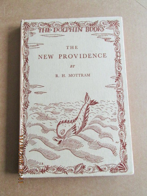 Image for The New Providence [ 1930 First Printing A Dolphin Book]