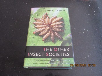 Image for The Other Insect Societies